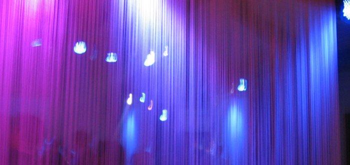 Fadenvorhang als Raumteiler